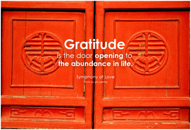 gratitude is the door opening to the abundance in life.
