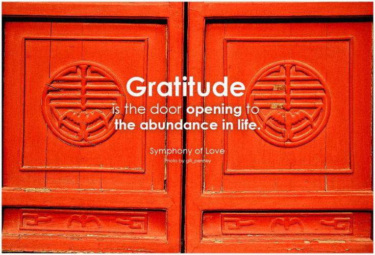 gratitude is the door opening to the abundance in life.